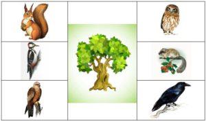 жители деревьев