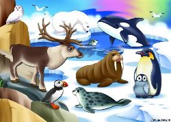 Животные крайнего севера