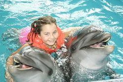 «Путешествие с дельфином»
