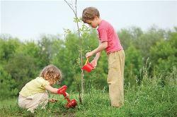 «Воспитание доброты к природе»