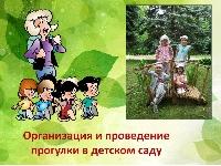 Организация и проведения прогулки в детском саду