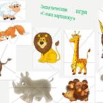 Демонстрационный материал Зоопарк